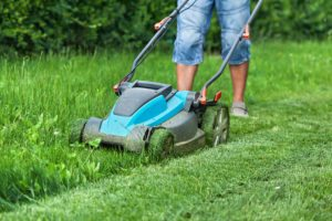 Senior Care in Highland Park IL: Tips to Help Dad Spring Clean his Yard